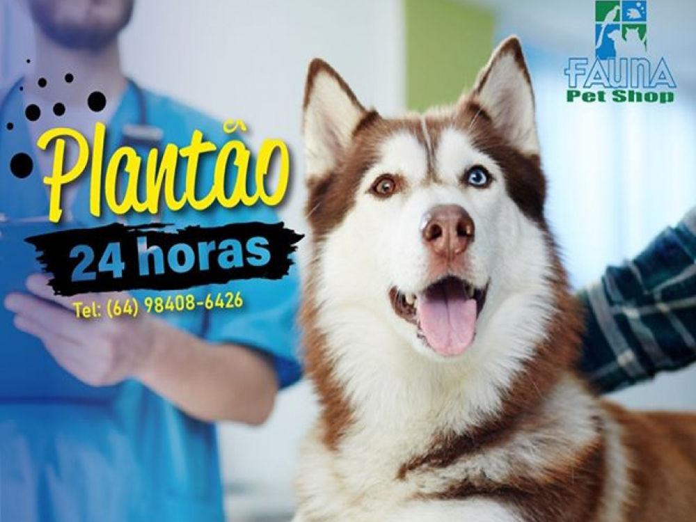 Fauna Pet Shop - imagem 3
